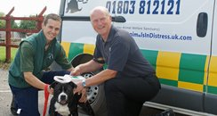 dog warden and staffordshire bull terrier