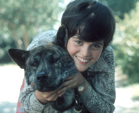 A Young Donny Osmond