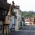 Image 9: Visit Essex
