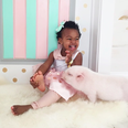 a little child and a pig