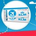 KLM Questionnaire