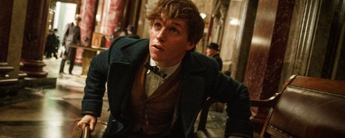 Fantastic Beast and Where to Fnd Them