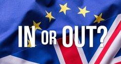 EU Referendum In out