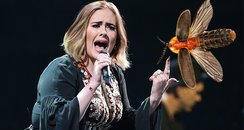 Adele Bug Stage Invasion