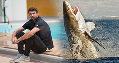 Michael Phelps vs Great White Shark