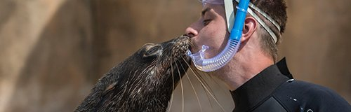 seaQuarium article